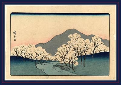 Sakura Drawing - Sakura Namiki Zu by Utagawa Hiroshige Also And? Hiroshige (1797-1858), Japanese