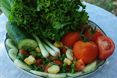 Photograph - Salad Plate by Robyn Stacey
