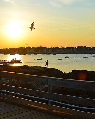 Photograph - Salem Willows Sunset by Toby McGuire