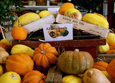 Photograph - San Joaquin Valley Squash Display by Michele Myers