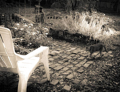 Photograph - Sally And The Rosemary Garden Sepia by Christy Usilton