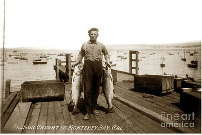 Photograph - King Salmon Caught In Monterey Bay Calif.circa 1915 by California Views Archives Mr Pat Hathaway Archives