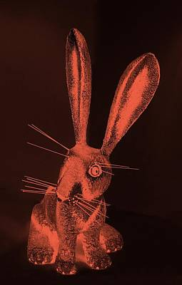 Photograph - Salmon New Mexico Rabbit by Rob Hans