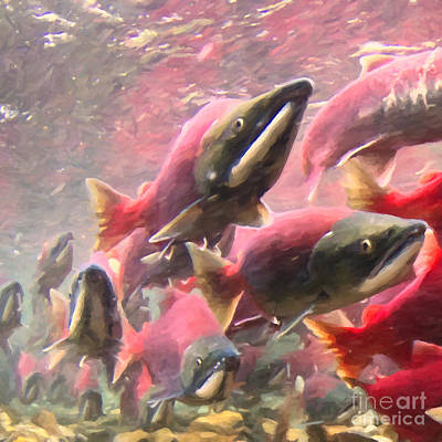 Sea Foods Digital Art - Salmon Run - Square - Painterly - 2013-0103 by Wingsdomain Art and Photography