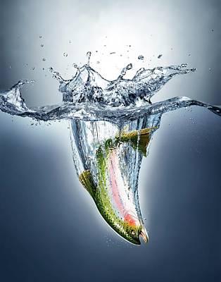 3 Fish Photograph - Salmon Splashing Into Water by Leonello Calvetti