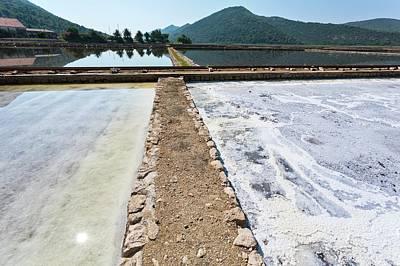 Salt Evaporation Ponds Art Print by Dr Juerg Alean