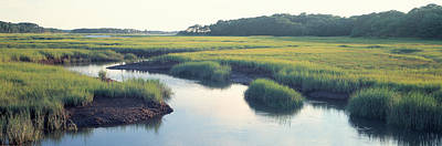 Wetlands Photograph - Salt Marsh Cape Cod Ma Usa by Panoramic Images