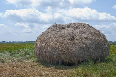 Photograph - Salt Marsh Hay by Rick Mosher
