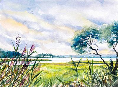 Salt Marshes Delaware Art Print