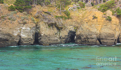 Photograph - Salt Point Sea Caves by Suzanne Luft