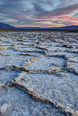 Photograph - Salt Polygons Death Valley by Juli Scalzi