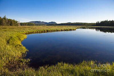 Clear Sky Photograph - Salt Pond At Acadia by Diane Diederich