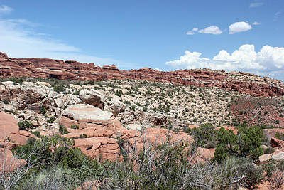 Photograph - Salt Valley 2 Arches National Park by Mary Bedy