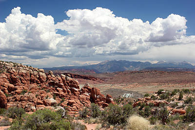 Photograph - Salt Valley 6 Arches National Park by Mary Bedy