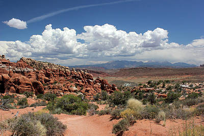 Photograph - Salt Valley With La Sal Mountains by Mary Bedy