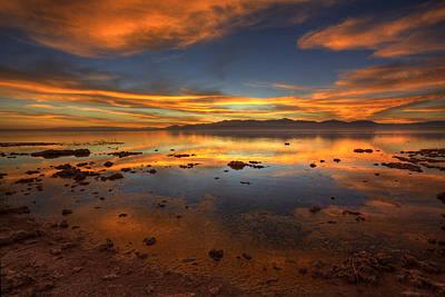 Photograph - Salton Sea Color by Peter Tellone