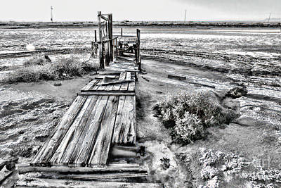Photograph - Salton Sea Dock Under Renovation By Diana Sainz by Diana Raquel Sainz