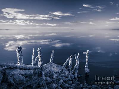 Bizarre Photograph - Salton Sea by Jennifer Magallon