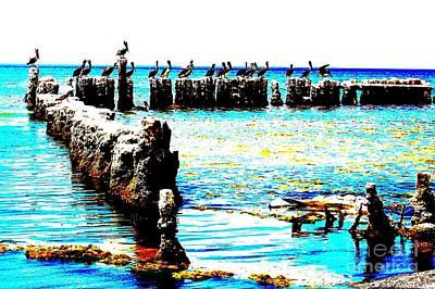 Bathe Digital Art - Salton Sea Pelicans by C Lythgo