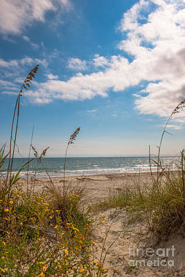 Photograph - Salty Sea Breeze by Dale Powell