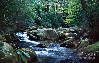 Saluda Photograph - Saluda Headwaters by Skip Willits