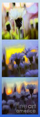 Photograph - Salute Triptych by Jean OKeeffe Macro Abundance Art