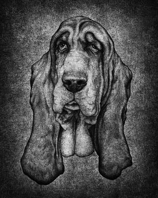 Sam Portait Black And White Art Print by Kyle Wood