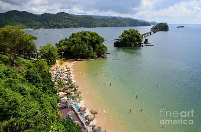 Samana In Dominican Republic Art Print