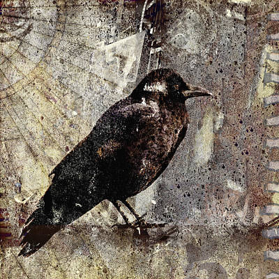 Raven Digital Art - Same Crow Different Day by Carol Leigh