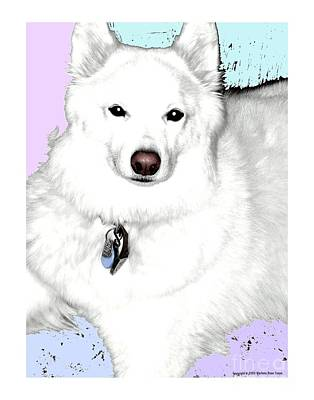 Photograph - Samoyed by Marlene Rose Besso