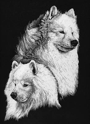 Samoyed Art Print by Rachel Hames