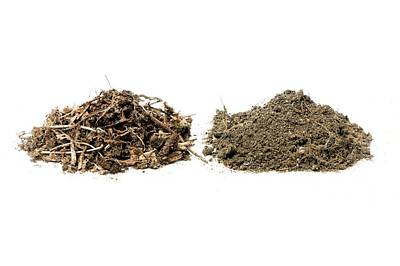 Turf Photograph - Samples Of Leaf Mould And Turf Loam by Dr Jeremy Burgess
