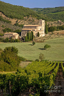 San Antimo - Tuscany Art Print by Brian Jannsen