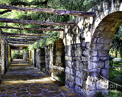 Photograph - San Antonio C by Ken Frischkorn