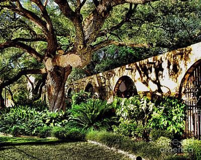 Photograph - San Antonio D by Ken Frischkorn