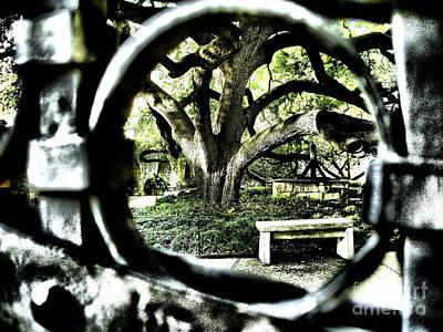 Photograph - San Antonio H by Ken Frischkorn