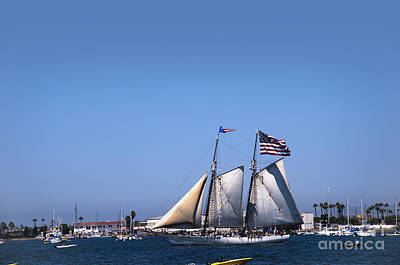 Photograph - San Diego Sailing by Brenda Kean