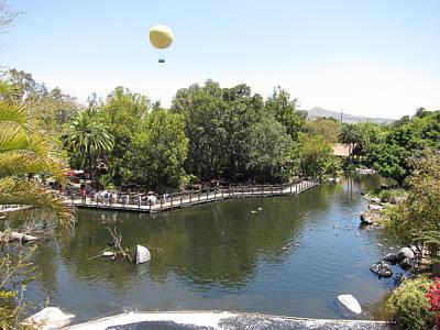 San Photograph - San Diego Zoo - 12129 by DC Photographer