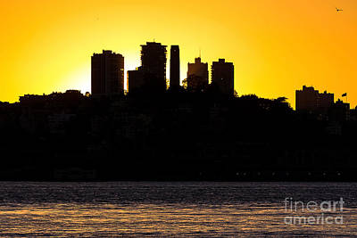 Photograph - San Francisco Silhouette by Kate Brown