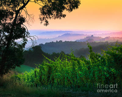 Italian Wine Photograph - San Gimignano Hills by Inge Johnsson