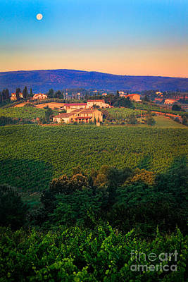 San Gimignano Vineyards Art Print by Inge Johnsson