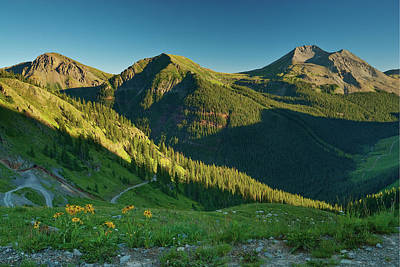 Photograph - San Juan Mountains And Sunflowers From by Witold Skrypczak