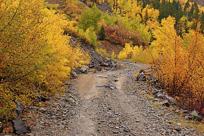 Photograph - San Juan Mountains In Autumn No.5 by Daniel Woodrum