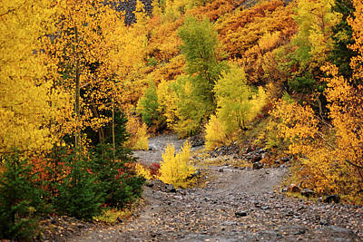 Photograph - San Juan Mountains In Autumn No.6 by Daniel Woodrum