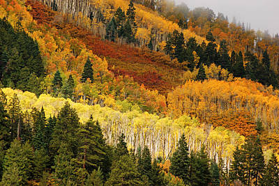 Photograph - San Juan Mountains In Autumn No.7 by Daniel Woodrum
