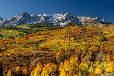 Photograph - San Juan Mountains In Golden Colorado by Willie Harper