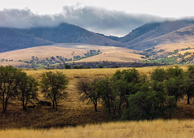 Photograph - San Rafael Valley by Beverly Parks