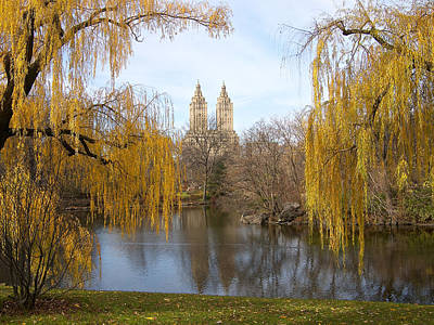 Central Park Photograph - San Remo In The Fall by Cornelis Verwaal