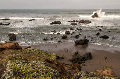 Photograph - San Simeon Beach by Lee Kirchhevel