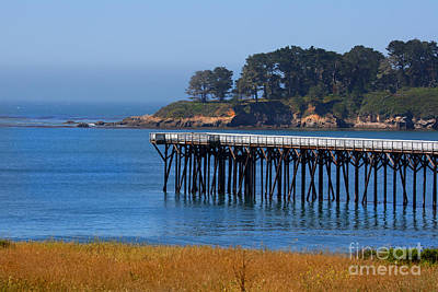 Photograph - San Simeon Pier By Diana Sainz by Diana Raquel Sainz